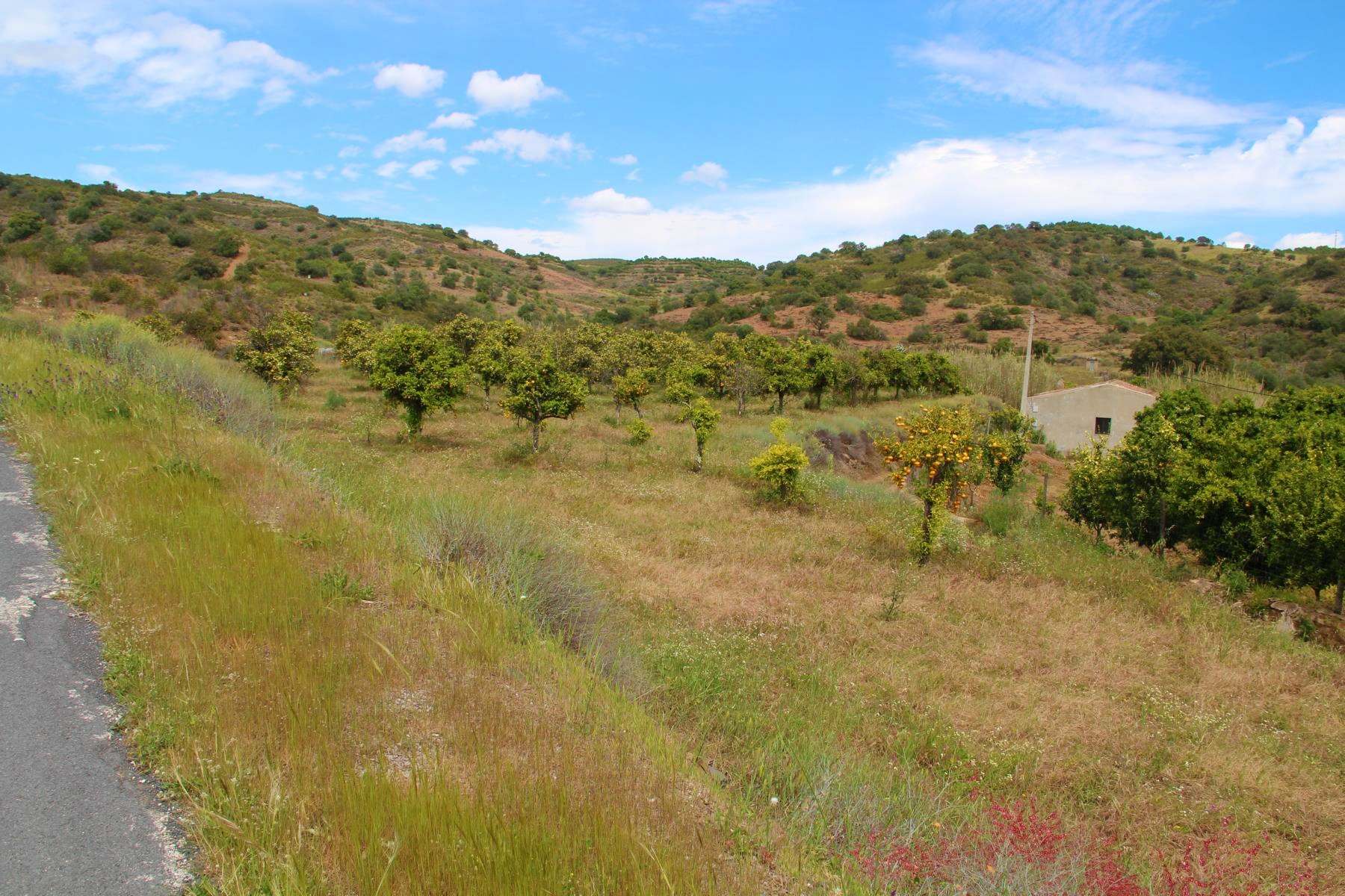 Farm, ruin, renovation project, Algarve